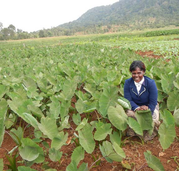 Agriculture Training yields results